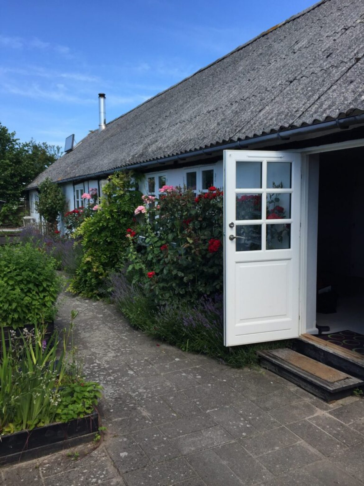 Bed & Breakfast Lyø – Revvej 5
